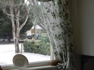 Snowy morning in Newberg